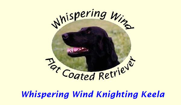 Whispering Wind Knighting Keela