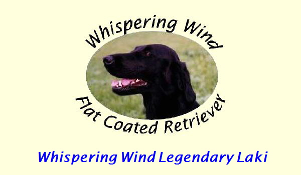 Whispering Wind Legendary Laki